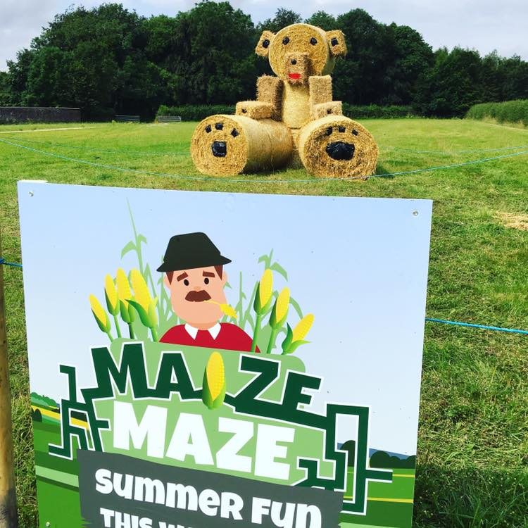 Maize Maze & Summer Fun at Sledmere