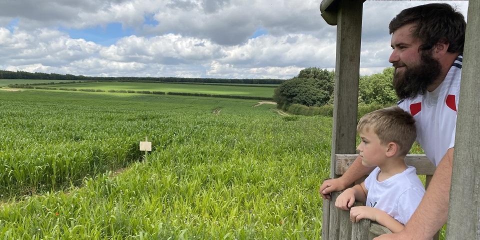 Maize Maze & Summer Fun at Sledmere 2021