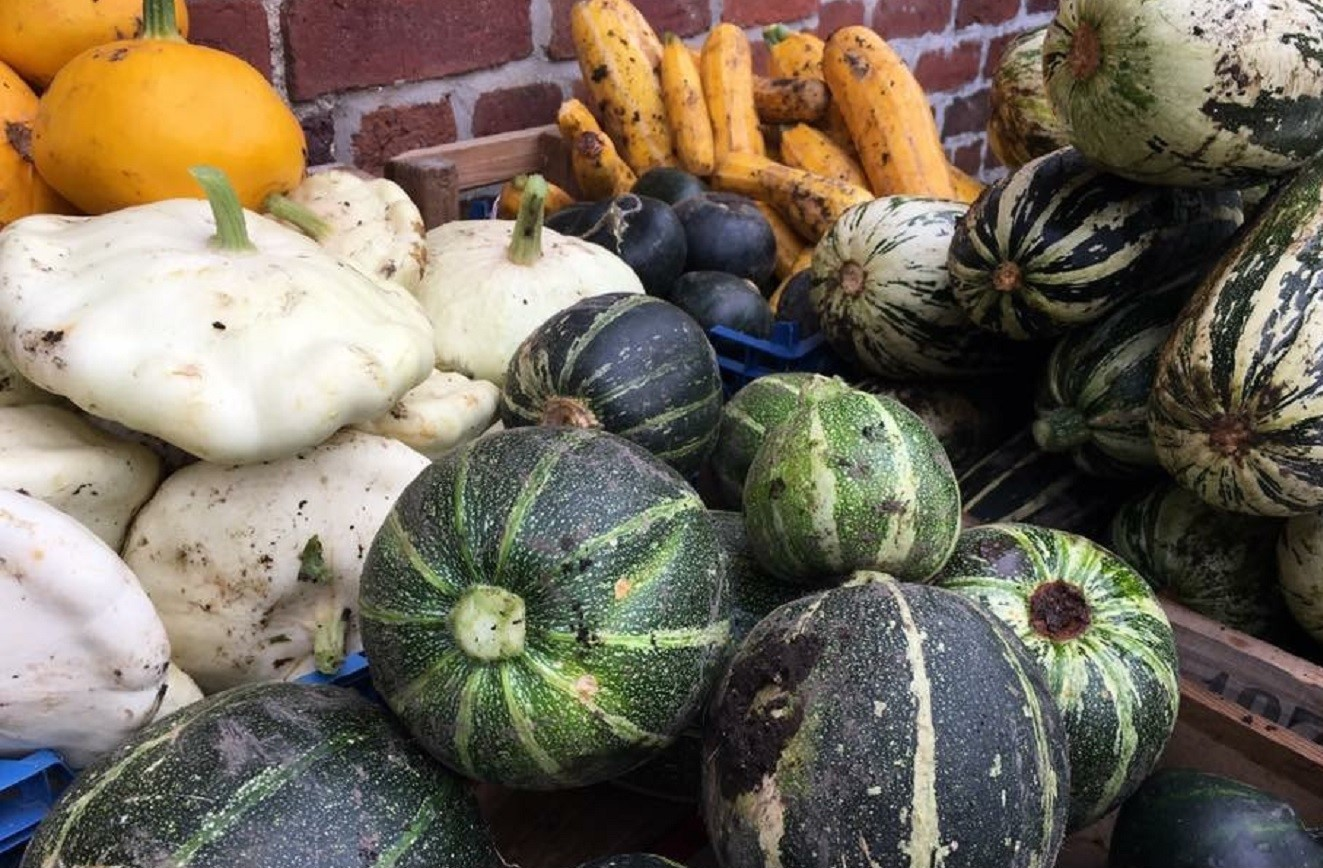 Fresh seasonal vegetables from the walled gardens