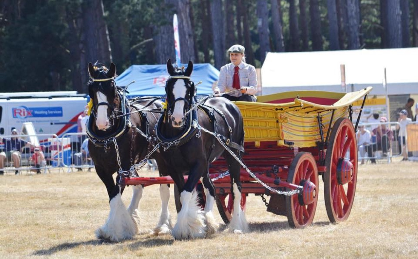 Sledmere shires and wolds wagon